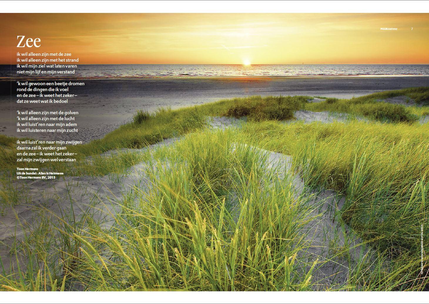 Beroemd De Zee Toon Hermans MW99 | Belbin.Info SD69
