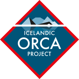 icelandic orca project