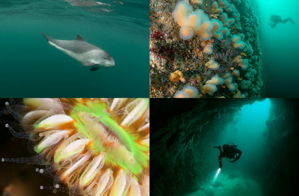 Noordzee Exploratie 2015