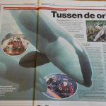 In de media: AD regio Utrecht over orka's in de Noordzee