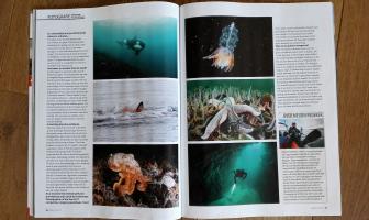 In de media: Duiken Magazine