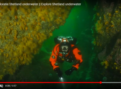 Noordzee vlog #2: Duiken door een rotsboog