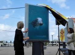 Foto expositie Scheveningen: Kom kijken op de boulevard!