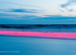 Noordzee geeft noodsignaal af